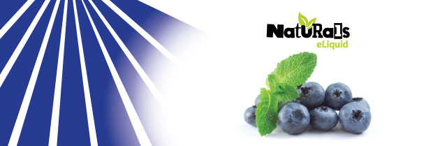 Organic Blueberry e-Liquid