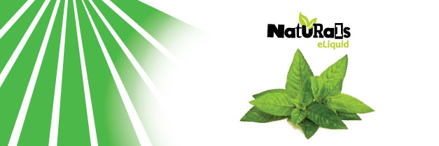Organic Spearmint Tobacco e-Liquid